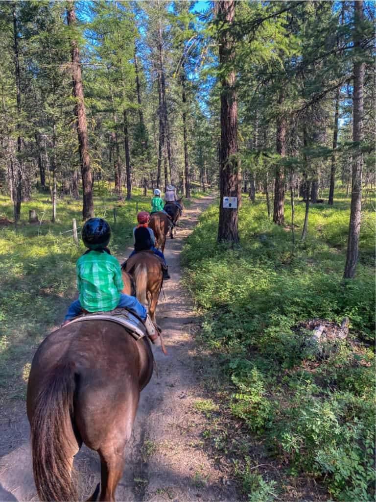 our second day on horseback