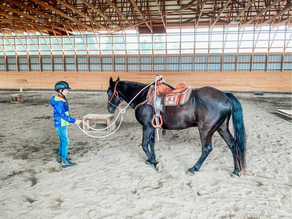 boy and horse in barn